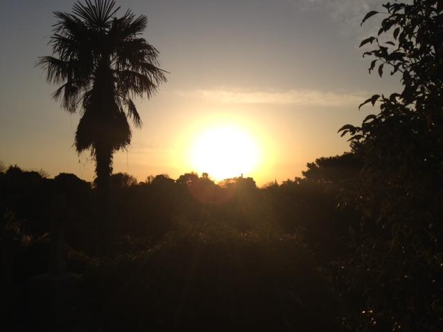 20121207横浜15外人墓地夕陽