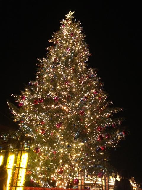 20121207横浜20赤レンガ倉庫クリスマスツリー