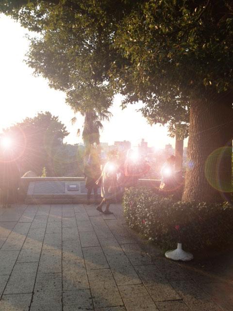 20121207横浜13外人墓地逆光