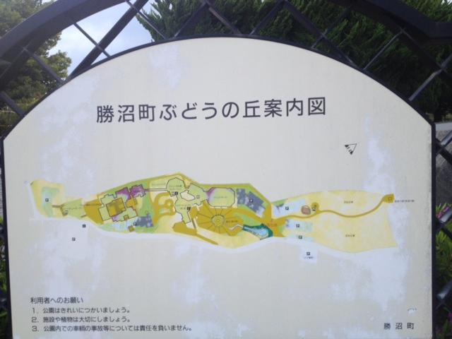 20130504の06勝沼02