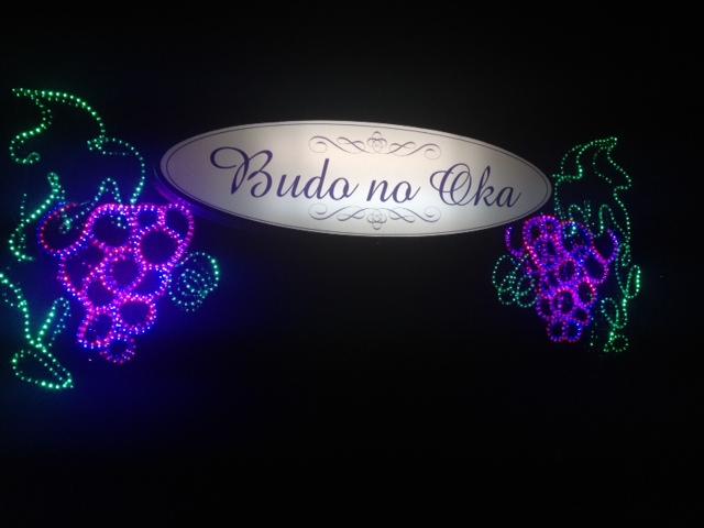 20130504の39勝沼ぶどうの丘の電飾