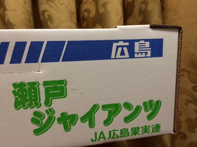 20140831瀬戸ジャイアンツ06