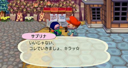 [Wiiゲーム]街へいこうよ、どうぶつの森:村の友達☆