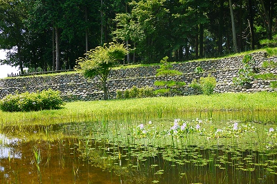 三の曲輪の池