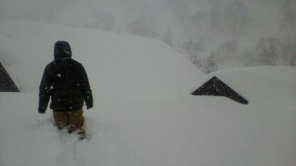 また雪積もってる!