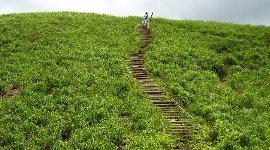 最後の丸太階段登り