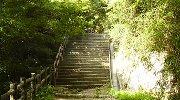 階段を上ると猩々池