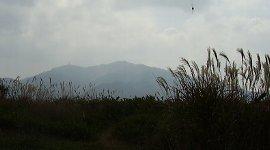 大阪で一番高い山:金剛山
