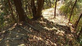急坂の丸太階段下りが…