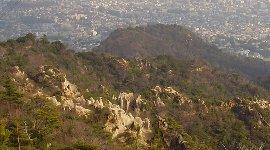 ロックガーデンの岩肌