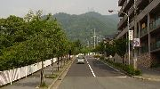 正面に見えるのが摩耶山