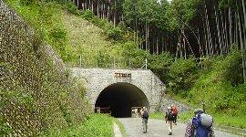 トンネル右手に登山口が…
