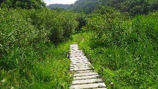 木道を渡って左岸へ