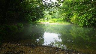 左岸にある池で…