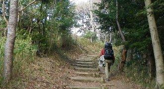 城山方面に通じる山道