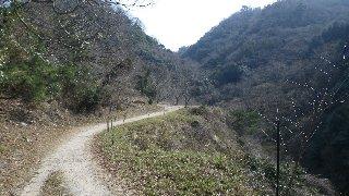 綺麗に手入れされた歩きやすい山道