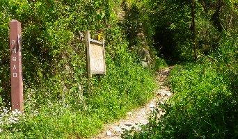 八幡谷登山口