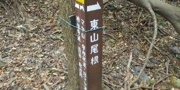 やっと普通の登山道に…