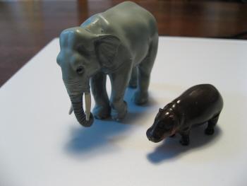 ゾウさんとコビトカバ
