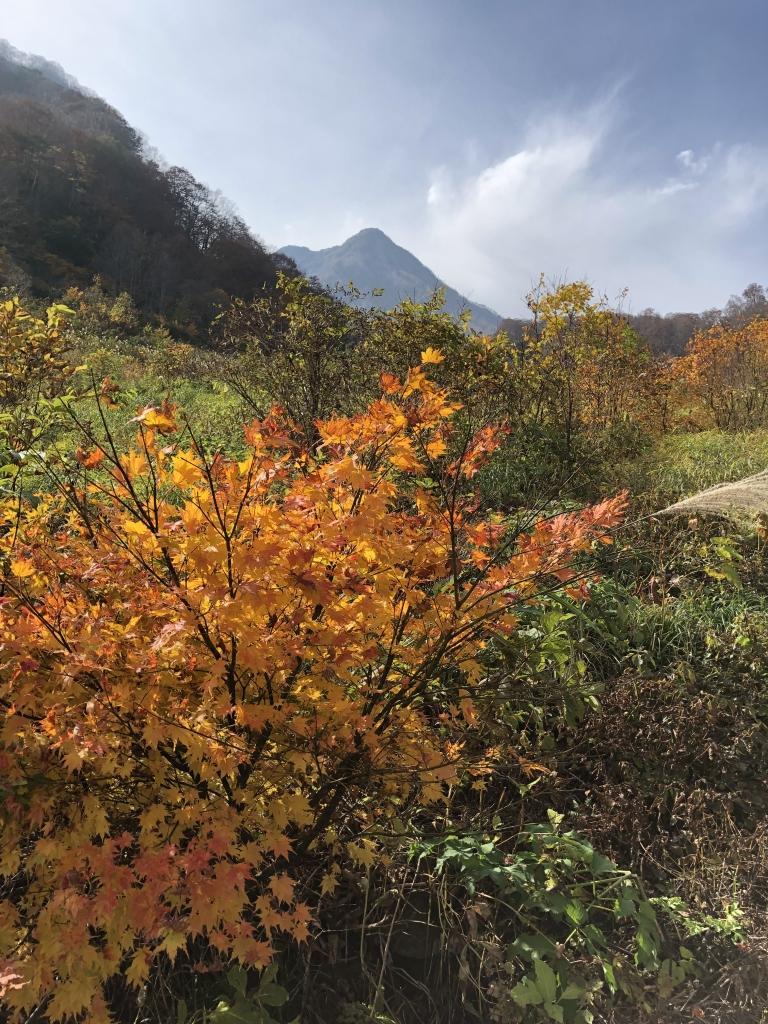 燕温泉から山頂