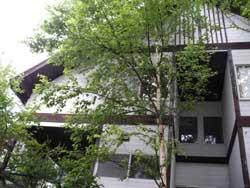 20050811-2