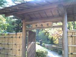 20051113-3