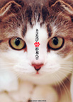 ネコなび 1 (1)