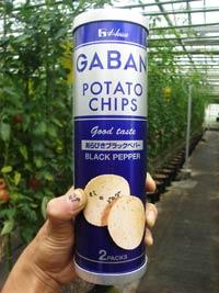 ガバンのポテトチップス