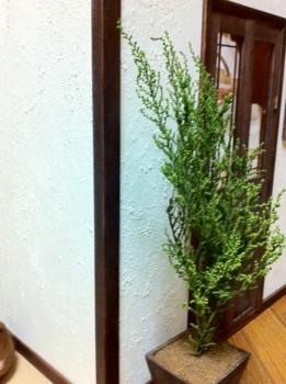 1/4 ドールハウス TF ティータイムジャスミン