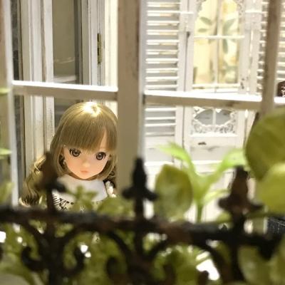 1/6ドールハウス  momoko  プライス