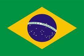 ブラジル 国旗 .png