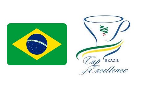 20140114 ブラジル COE.png