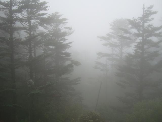 峨眉山04.JPG