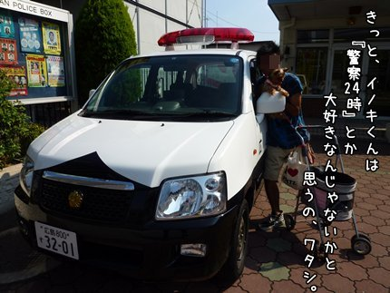 P1090179.JPG
