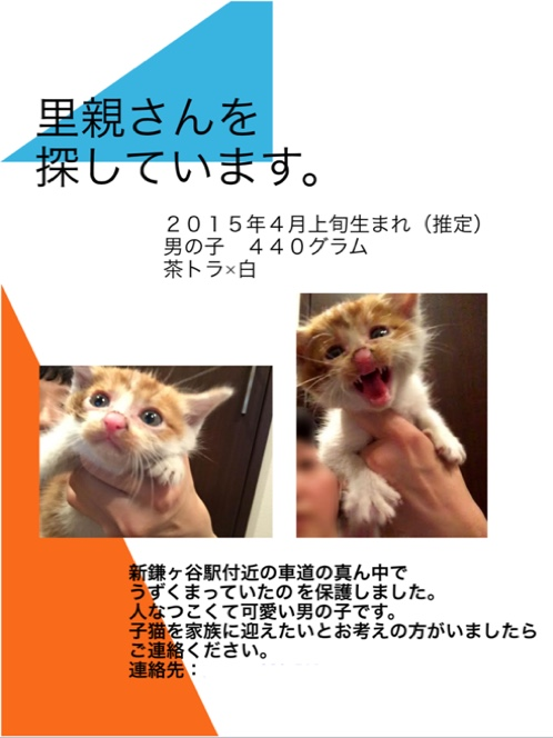 fc2blog_201505191641483b8.jpg