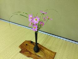 2014-1015-hana