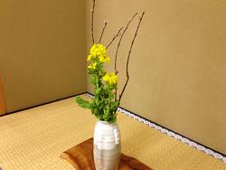 2015-0304-お花