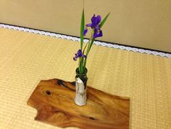 2015-0513-お花