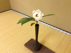 2015-0520-お花