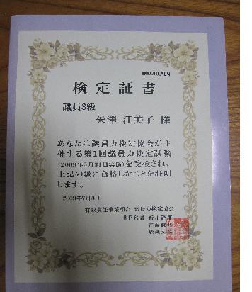 議員力検定3級合格 | えみこ日記