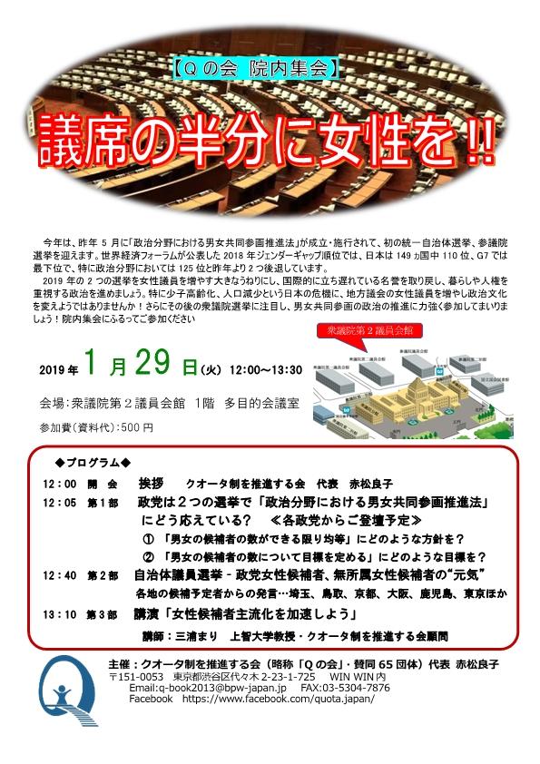 20190129院内集会チラシ案 (002)-1.jpg