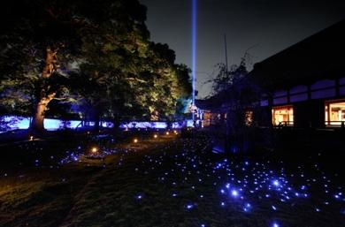 青蓮院ライトアップ