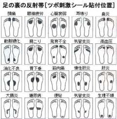 グラフィック0301003.jpg