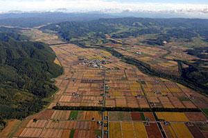 国営での農地再編整備が予定されている上士別地区