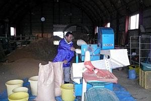 籾すり作業風景