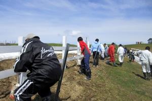 市民の協力で綺麗になった牧柵