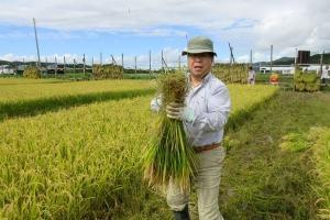 どの程度の収量になるのか楽しみな収穫作業
