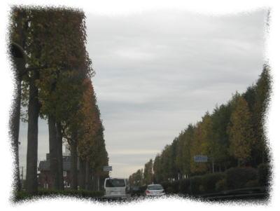 20091123-02