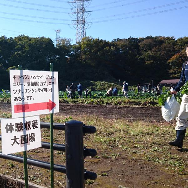 収穫祭01.jpg