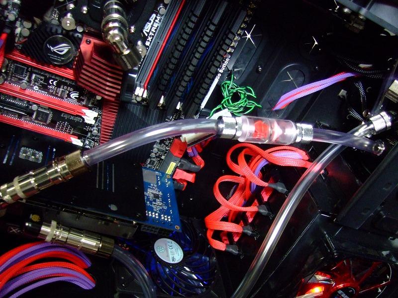 DSCF6655.jpg